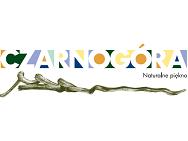 Narodowa Organizacja Turystyczna Czarnogóry